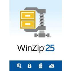 WinZip 25 Standard ML DVD