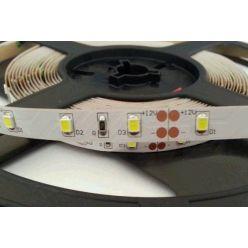 LED pásek Premium Line lighting SMD 2835 60LED/m, 5m, studená bílá, IP20,12V