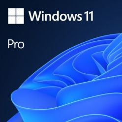 Microsoft Windows 11 Pro CZ DVD (OEM)
